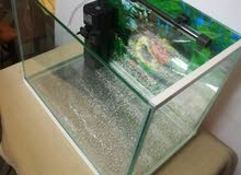 Aquarium with sliding lid, delivery available.