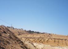 ارض للبيع في شفا بدران موقع مميز حوض 2*المقرن