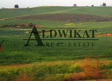 ارض 1000م للبيع في اجمل مناطق الحمر