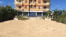 عماره تجاريه بمصر بالاسكندريه