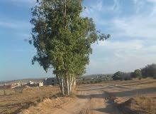 ارض للبيع مساحتها 4400
