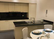 شقة فاخرة اول ساكن غرفتين وصالة شامل ومفروش في الجنبية