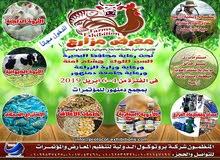 معرض مزارع للتنمية الزراعية والثروة الحيوانية والداجنة والاستزراع السمكي
