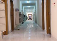 كامب مؤلف من 141غرفة