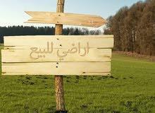 ارض للبيع بطرق الجبل الاصفر السلام بجوار مصنع لاشين