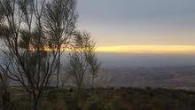 دنم شارع الستين اطلالة ع الغرب و جبال فلسطين