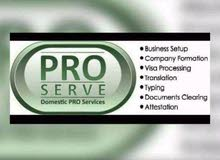 we deal PRO New BUSINESS SETUP SERVICES