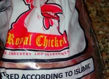 دجاج رويال جكن
