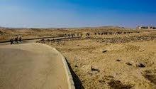 ارض 48 فدان مشاركة على طريق الواحات الرئيسى 6 اكتوبر