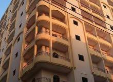المنوفية شبين الكوم البر الشرقي بالقرب من نادي الشرطة