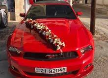 اضخم عرض لتاجير سيارات الافراح جميع انواع السيارات كشف واربع ابواب