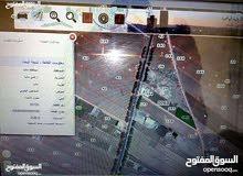 (سكن+مزرعه) ارض زراعيه للبيع-مادبا على الشارع الرئيسي عمان -مادبا -الكرك بأتجاه الجامعه الامريكيه