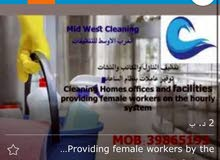 providing professional cleaners; contracts,and also in hourly basis
