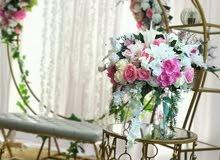 كوشات+إضاءات+استاندات راقيه لزهبة العروس