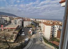 شقه للبيع في تركيا يلوا جينارجك
