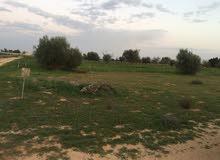الرقيعات منطقة المخاريم بالقرب (مسجد الشلابيك)