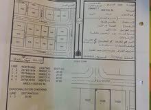 ارض المميزة للبيع شبك زاوية خلف جامعة البريمي