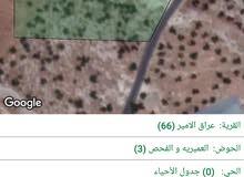 مزرعه مطله على الضفه الغربيه في عراق الامير حوض العميريه والفحص