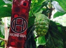 شراب مصنع من فاكهة النوني