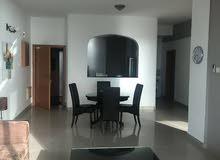 شقة مفروشة للإيجار في أمواج_furnished flat for rent in Amwaj