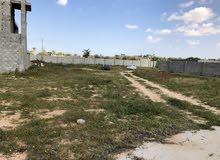 ارض سكنية علي طريق معبد ( 2 منازل عظم ) + استراحة مشطبة