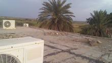 مزرعه في زبيد تبعد عن الخط الرئيسي نصف كيلو متر  مساحتها أربعين معاد  فيها طاقه