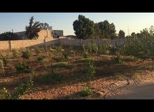 قطعة ارض في نهاية طريق ام الحشان قبل محطة بنزين (قدارة) علي اليمين جنب المدرسة حي سكني