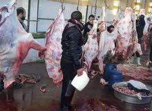 اجمل فواكه اللحوم عند جزارة الحوت