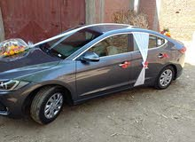 Hyundai Elantra - Cairo