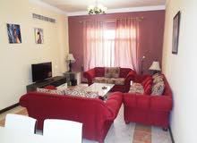 Spacious 3 Bedroom Aparment in Jufair area