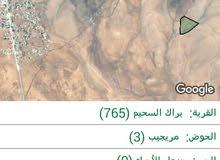 قطعة أرض في محافظة المفرق الخضراء