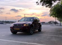 Gasoline Fuel/Power   BMW X5 2010