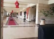 شقه 147متر عمارات طيبة زهراء المعادي