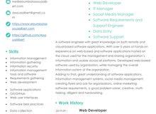 IT/ Web Developer