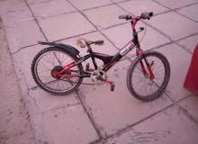 دراجه هوائيه طباكي وعادي