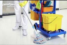 مطلوب  عمال نظافه