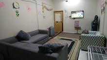 مشاركة سكن شقة غرفة وصالة