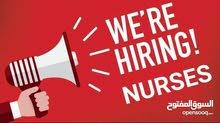 Register Nurse Home Care