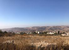 أراضي مفروزة للبيع في ماحص