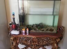 حوض اسماك مع فلاتر (نظام ثلاث فلاتر) ومسطره اوكسجين مع الطاولة