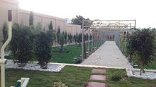 تنسيق حدائق وتركيب المسطحات الخضراء