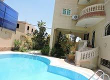 فيلا روعة 4 غرف للايجار اليومي في الشيخ زايد