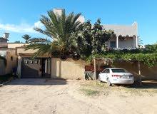 جنزور شارع سليمان خاطر (  سيدي عبط اللطيف)