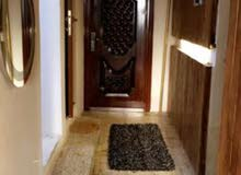 شقة في الكرادة منطقة المسبح للايجار