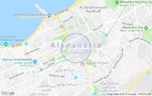 new apartment is up for sale in Alexandria Asafra
