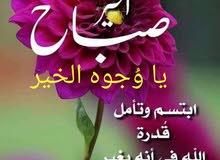 مدرس لغة عربية لجميع المراحل والتأسيس