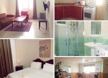 Benid Al Qar - Spacious Fully Furnished 1 Bed Apartment