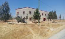 ارض+مبنى 10دنم في طريق المطار القسطل