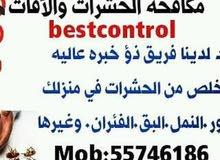 اباده تامه للحشرات والقوارض والصراصير