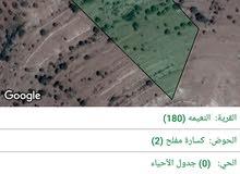 ارض زراعية في النعيمة بسعر مغري